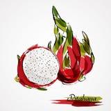 Fatia de Pitahaya Imagens de Stock