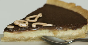 Fatia de tarte Fotografia de Stock