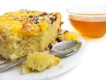 Fatia de torta com raisins foto de stock royalty free