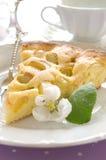 Fatia de torta com rhubarb Foto de Stock Royalty Free