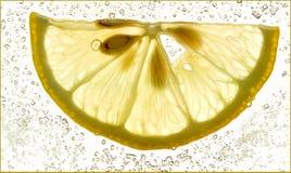 Fatia de um limão fresco Imagens de Stock