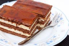 Fatia do bolo do licor Fotografia de Stock