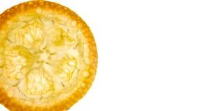 Fatia do Kumquat foto de stock