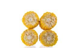 Fatia do milho Imagem de Stock