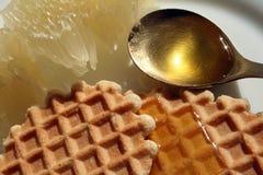 Waffles com mel e fruto fotos de stock royalty free