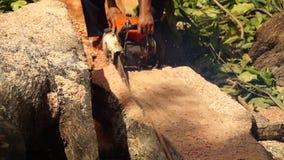 A fatia do rasgo do homem cortou o tronco de árvore enorme com serra de cadeia vídeos de arquivo