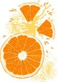 A fatia do vetor da laranja Fotografia de Stock Royalty Free