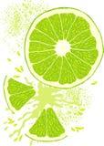 A fatia do vetor do limão Imagens de Stock Royalty Free