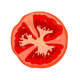 Fatia redonda do tomate isolada Ingrediente dos vegetais para pratos Ilustração do vetor Foto de Stock Royalty Free