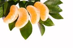 Fatias alaranjadas da fruta Fotografia de Stock Royalty Free