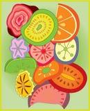 Fatias da fruta ilustração do vetor