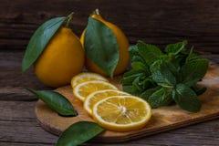 Fatias da hortelã fresca e do limão na placa de madeira Fotografia de Stock Royalty Free