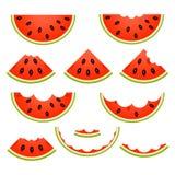 Fatias da melancia isoladas ilustração stock