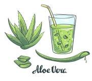 Fatias de aloés Vera em um vidro Cocktail saudável ilustração stock
