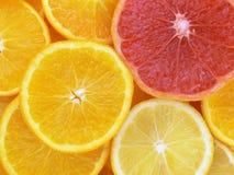 Fatias de frutas Imagem de Stock Royalty Free