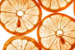 Fatias de laranja Fotos de Stock