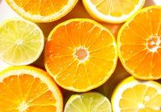 Fatias de laranjas, de limões, de cais e de mandarino Imagem de Stock Royalty Free