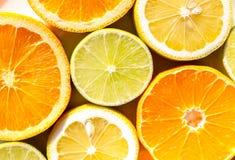 Fatias de laranjas, de limões, de cais e de mandarino Foto de Stock Royalty Free