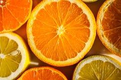 Fatias de laranjas, de limões, de cais e de mandarino Imagens de Stock