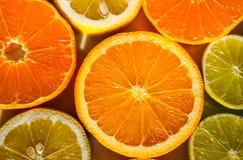 Fatias de laranjas, de limões, de cais e de mandarino Imagem de Stock