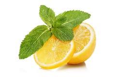 Fatias de limão e de hortelã Foto de Stock