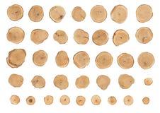 Fatias de madeira Fotografia de Stock