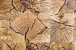 fatias de madeira da grão da extremidade Fotografia de Stock Royalty Free