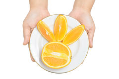 Fatias de oferecimento de laranjas Imagens de Stock Royalty Free