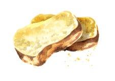 Fatias de pão Ilustração tirada mão da aquarela isolada no fundo branco Imagem de Stock