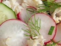 Fatias de rabanete em uma salada Imagens de Stock Royalty Free