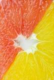 Fatias do citrino Imagens de Stock
