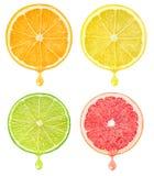 Fatias do citrino com gota do suco imagens de stock royalty free