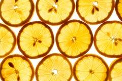 Fatias do limão Imagens de Stock Royalty Free