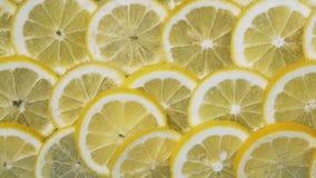 Fatias do limão em bolhas da água vídeos de arquivo