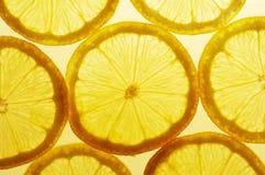 Fatias do limão Fotografia de Stock Royalty Free