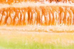 Fatias do melão do cantalupo imagem de stock