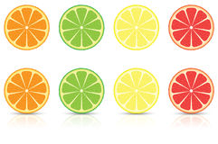 Fatias dos citrinos Fotografia de Stock