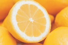 Fatias dos citrinos foto de stock royalty free