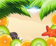 Fatias dos frutos tropicais em um fundo da costa de mar Fotografia de Stock Royalty Free