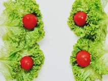 Fatias e tomates da salada da alface fotos de stock