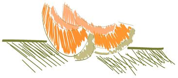 Fatias estilizados de melão isoladas Fotografia de Stock Royalty Free