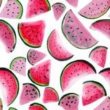 Fatias frescas da sobremesa do verão vermelho bonito bonito suculento maduro saboroso saboroso delicioso colorido brilhante marav ilustração stock
