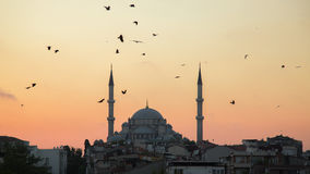 Fatih Camii Conqueror`s Mosque in Istanbul, Turkey. Dusk, Birds fly in silhouettes. Royalty Free Stock Images