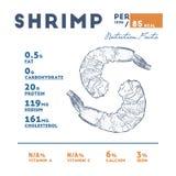 Fatos do camarão, vetor da nutrição do esboço da tração da mão ilustração stock
