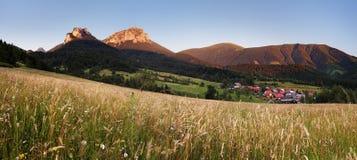 Fatra mountain panorama with flower - Slovakia Royalty Free Stock Photography