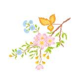 Fatta vektorn för blommor för buskewhitvåren utan lutningar Arkivfoto