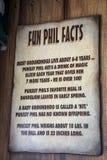 Fatti dei phi di divertimento alla tana del ` s di Punxsutawney Phil Immagini Stock Libere da Diritti