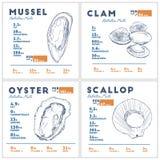 Fatti di nutrizione del vettore di schizzo di tiraggio della mano della cozza, della vongola, dell'ostrica e del pettine illustrazione di stock