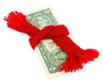 Fattigt tillstånd av finanser Dollar och röd halsduk Royaltyfria Bilder