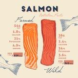 Fatto di nutrizione di selvaggio e del salmone d'allevamento illustrazione di stock
